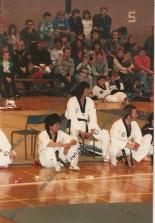 Master Yoon and Korean demo team